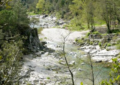 Vallée du Gardon